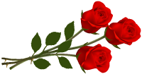 Large_Red_Roses_PNG_Clipart.png